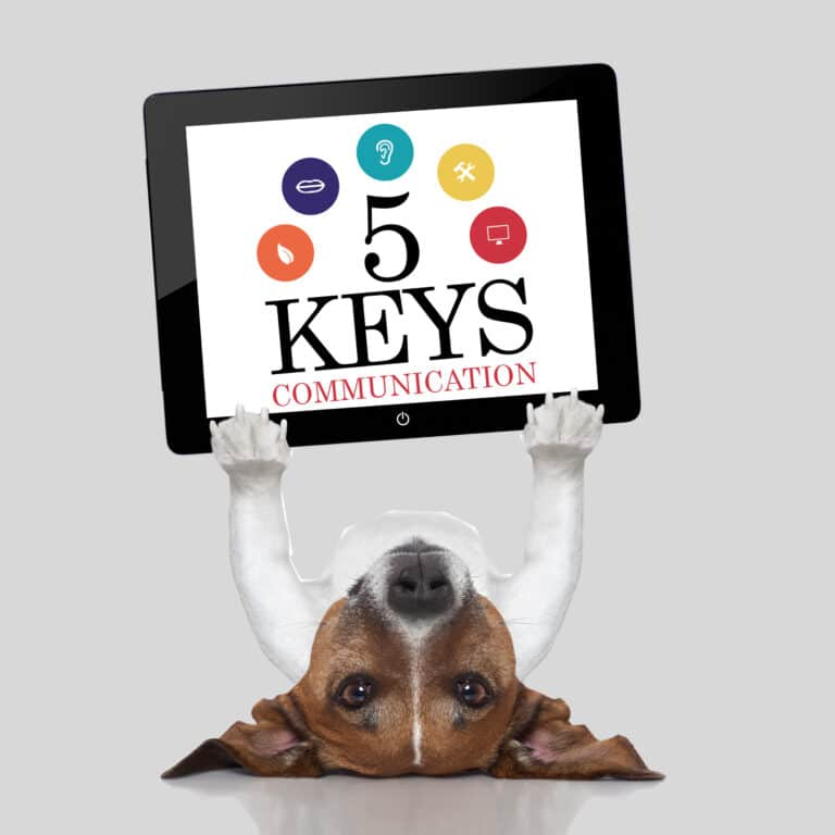 5 Keys - Services page